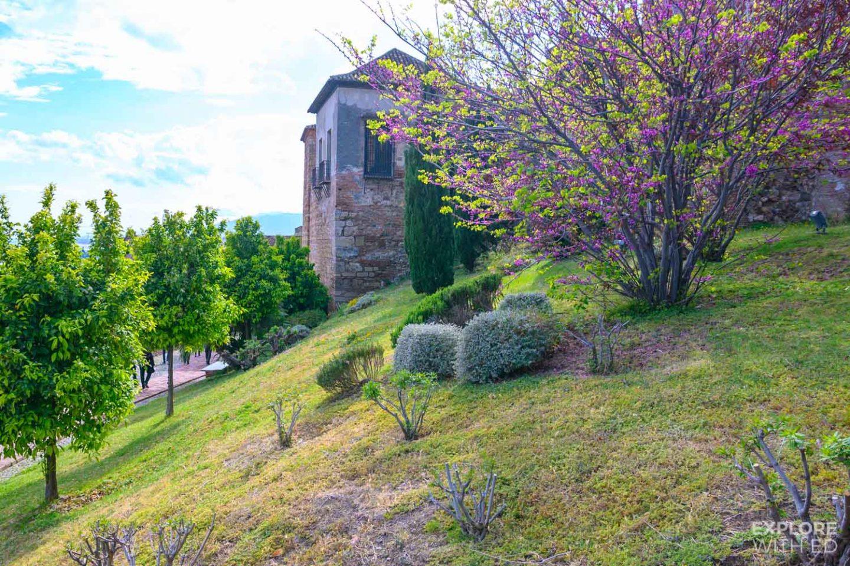 The gardens inside Alcazaba, Malaga