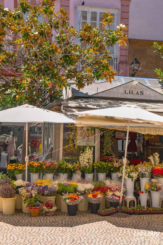 Plaza de las Flores flower market, Cadiz